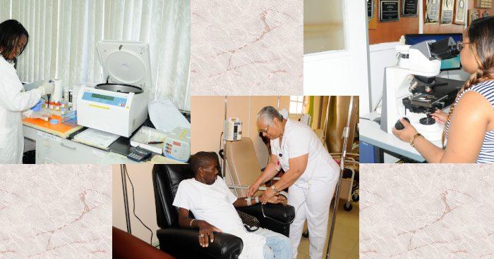 pathology_collage